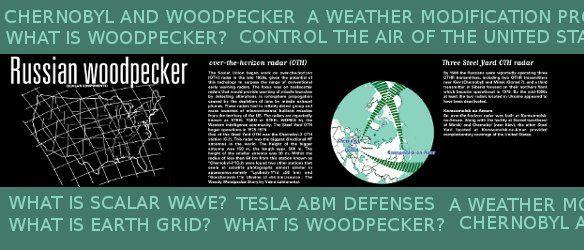 mapwoodpecker